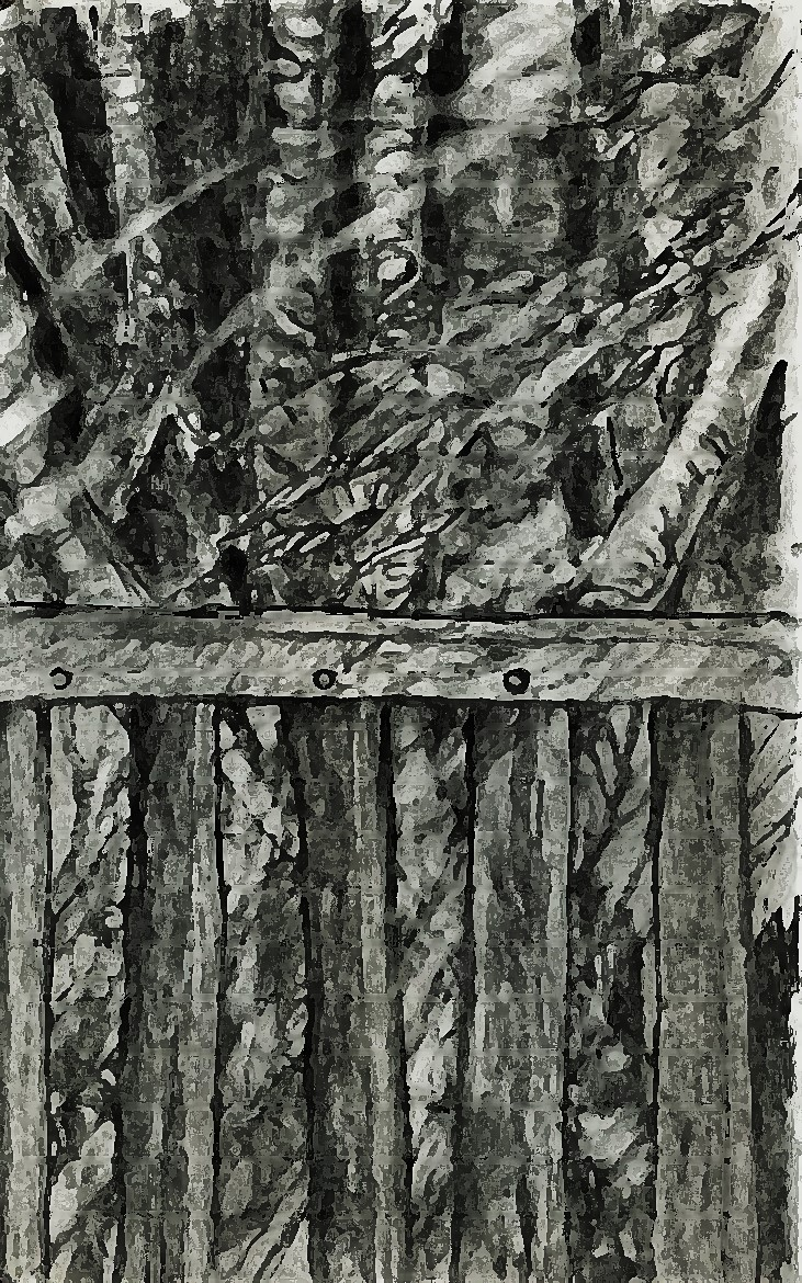 Fence-and-woods-3