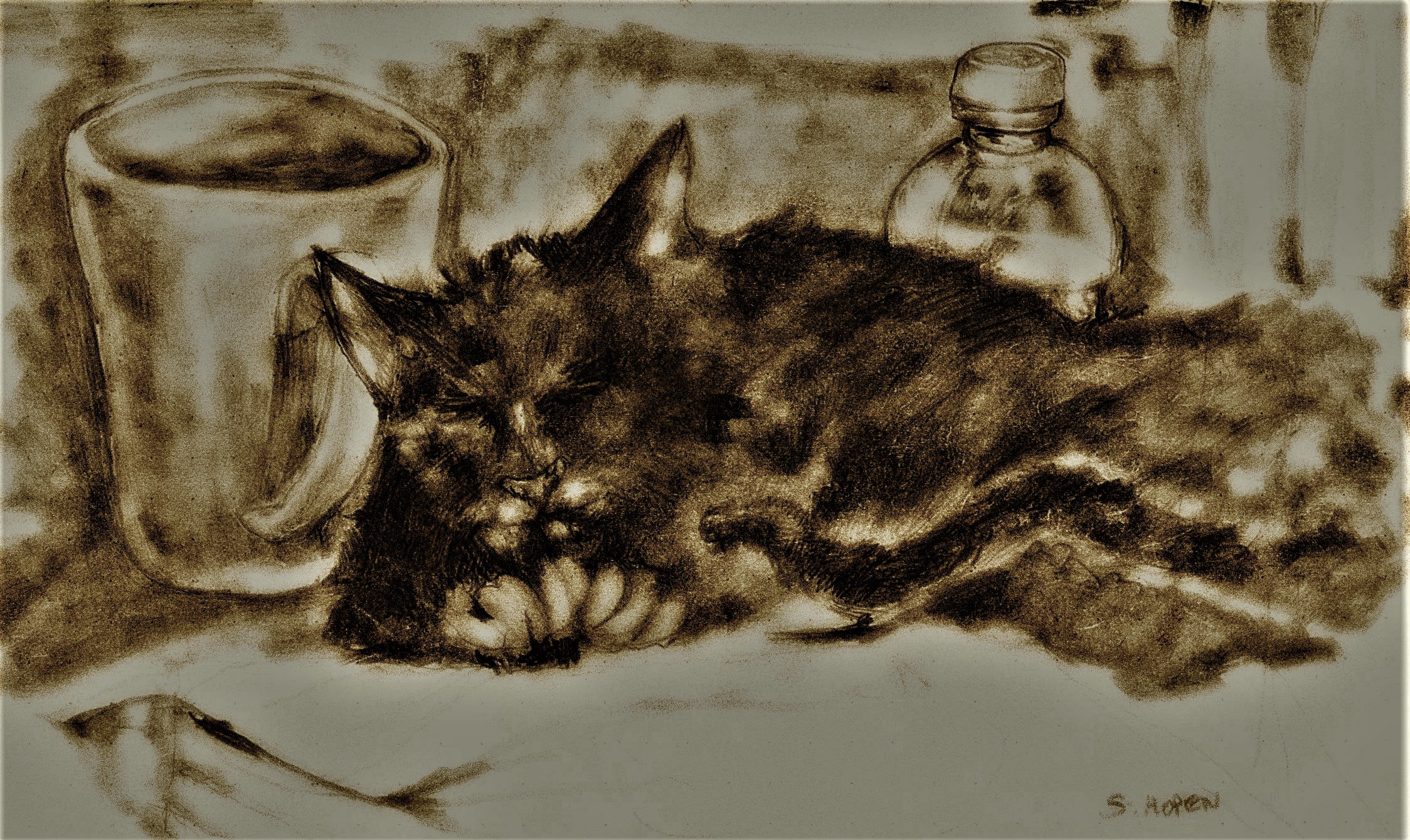 Sleeping-Black-Cat
