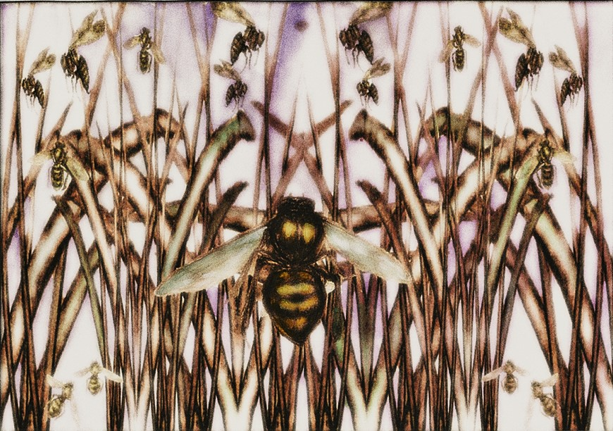 bees-in-the-reeds-3-glow